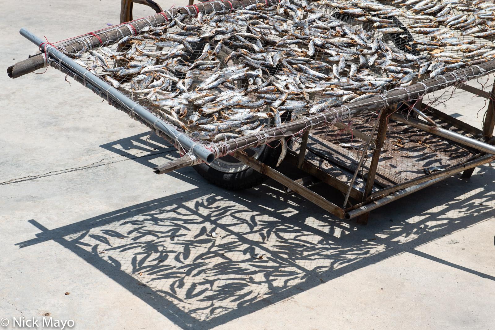 Fish catch drying under the sun at Niaoyu island.