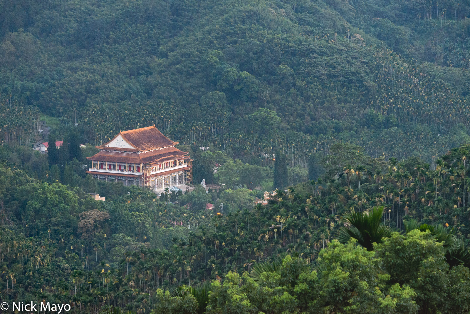 Betel Tree, Central Mountains, Roof, Taiwan, Temple, photo