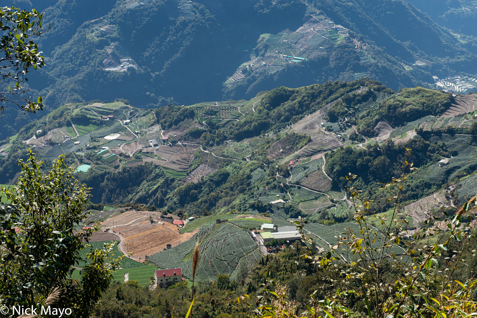 Farms in the upper Zhuoshui valley seen from the village of Bo-Wang.