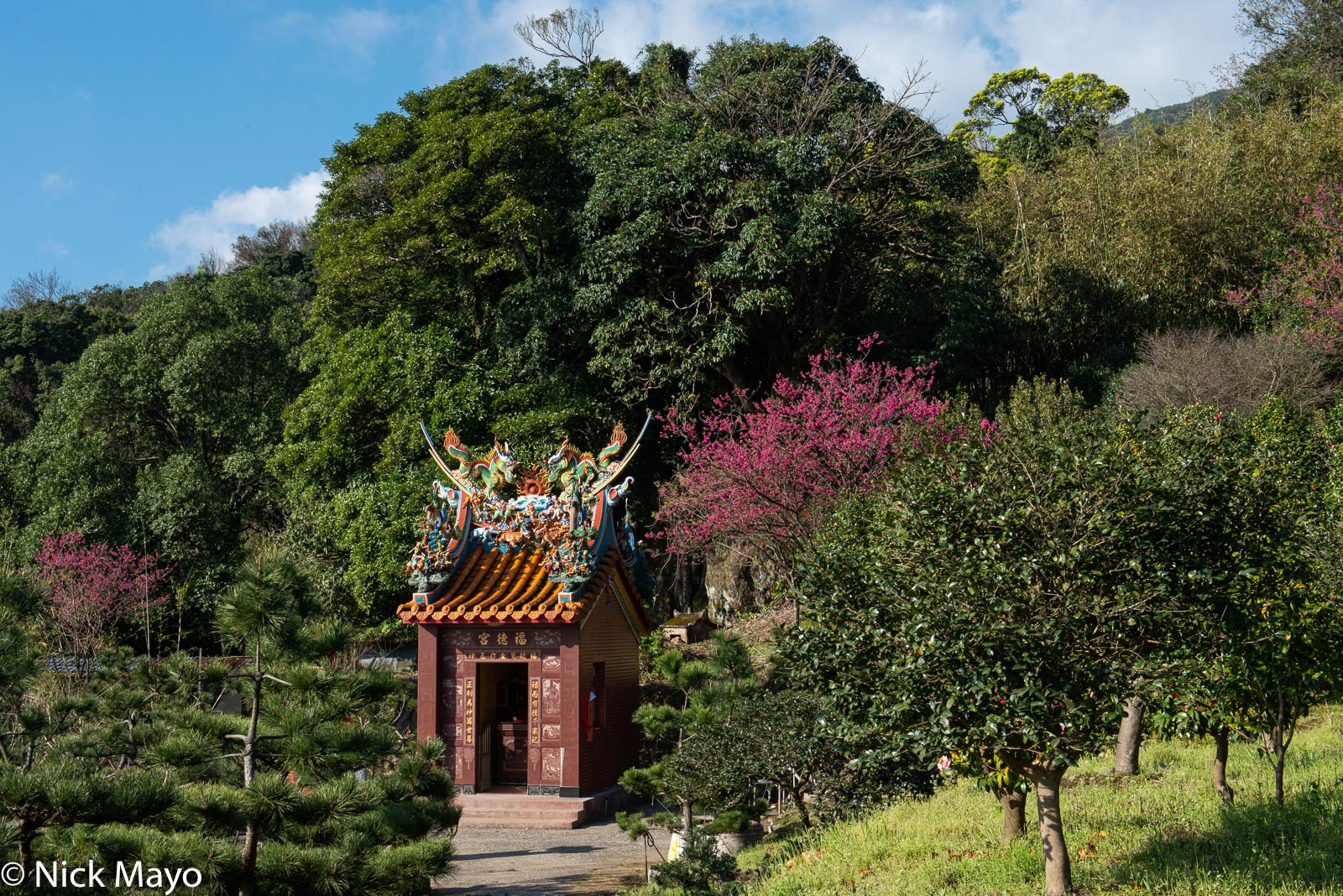 A farmers' shrine in Yangmingshan.